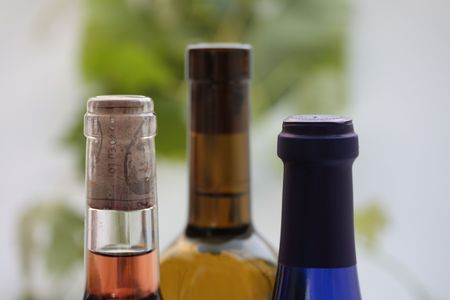 bordeau: wine bottles, grapevines in the background