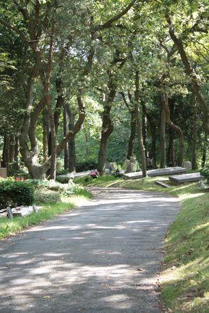 crematorium: Cemetery overview
