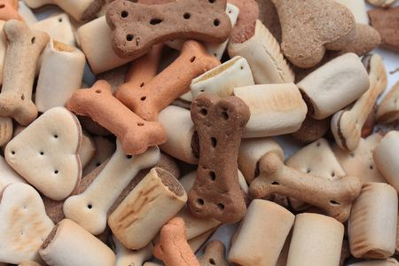 chew over: Dog biscuits