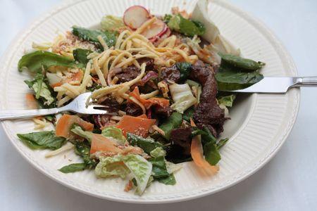 일본 산 테리 야키 소고기 샐러드