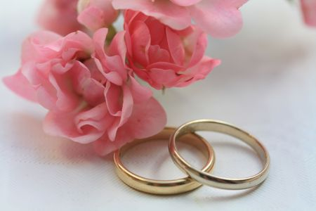 Wedding bands and pink roses photo