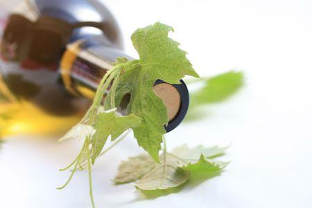 bordeau: Wine bottle and grapevines