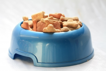 chew over: Blue bowl with dog cookies in different colors, shapes and maybe tastes too...