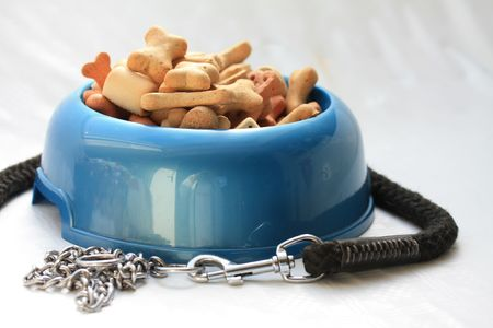 chew over: Blue dogbowl filled with cookies and a dog leash Stock Photo