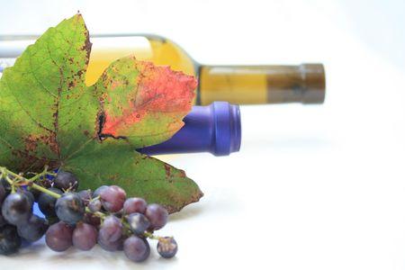 bordeau: Autumn colored grape leaves, grapes and wine bottles Stock Photo