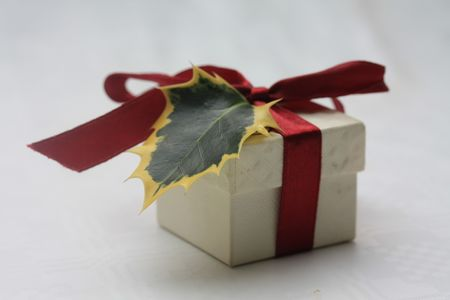 A small christmas gift, decorated with a red ribbon and a holly leaf photo