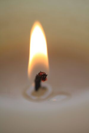 Close up of a flame, ivory white candle Stock Photo - 5692636