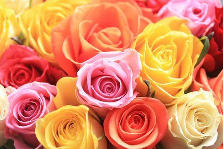 mujer con rosas: Un ramo de rosado mixto de diferentes colores