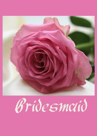 pink rose card for a bridesmaid photo