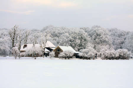 A farm in a forest, meadow covered with snow and frozen trees photo