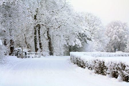 Eine windig Straße, bedeckt mit Schnee und gefrorene Bäume im Hintergrund  Standard-Bild - 6230098