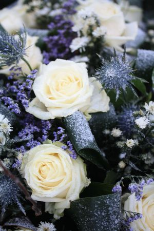 A flower arrangement in the snow, white roses and other blue flowers