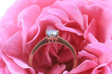 Solitair diamond engagement ring in a soft pink rose Stock Photo
