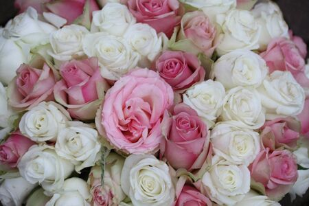Pink and white roses in a wedding bouquet photo