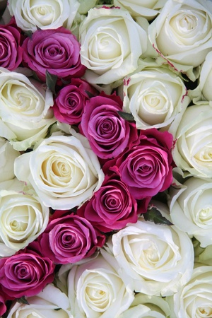 Floral arrangement made off big white and pink roses Stock Photo - 9187431