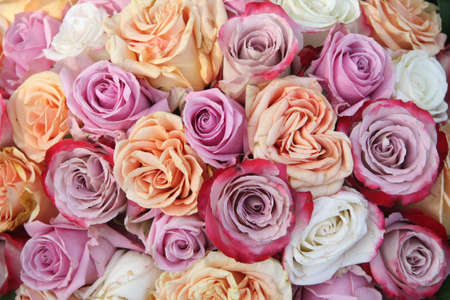A floral arrangement made off big orange, white and purple lila roses Stock Photo