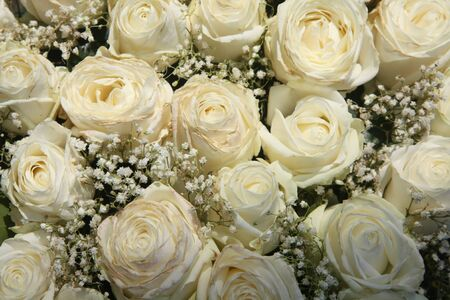 A floral arrangement made off white roses and white Gypsophila or Baby's Breath Stock Photo - 9248590