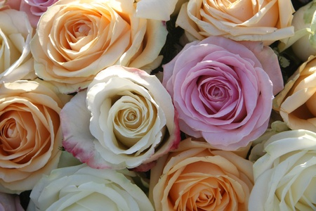 A floral arrangement made of big orange, white and purple lila roses in the sunlight photo