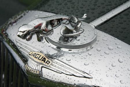 noord: August 6th, 2011 Oldtimershow Santpoort Noord, the Netherlands Vintage Jaguar logo