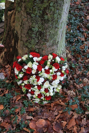 red and white sympathy floral arrangement near a tree photo