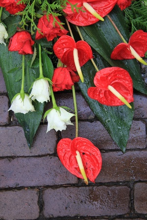 sympathy flowers: red and white sympathy flowers, roses and anthuriums