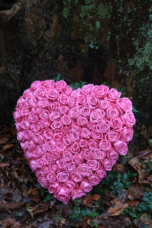 sympathy flowers: Heart shaped sympathy flower arrangement with pink roses