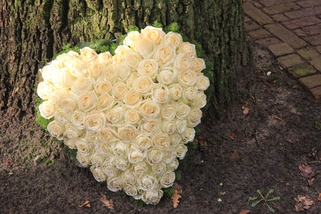 mourn: Heart shaped sympathy flower arrangement with white roses near a tree Stock Photo