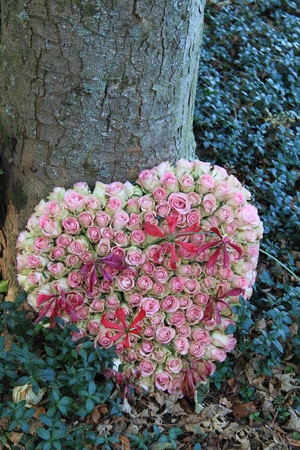 heart shaped: Heart shaped sympathy flower arrangement with pink roses