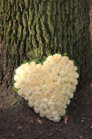 sympathy flowers: Heart shaped sympathy flower arrangement with white roses near a tree Stock Photo