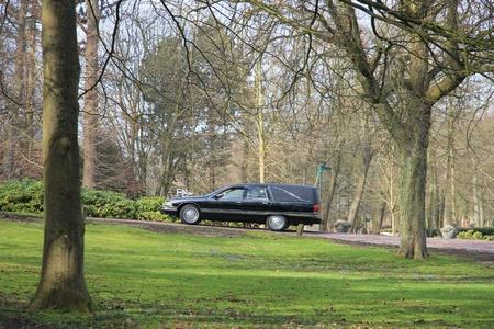 hearse: A black American hearse on a graveyard