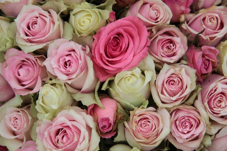 Detail of a wedding centerpiece, different shades of pink roses