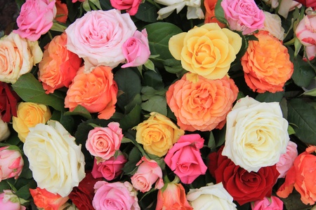 Mixed rose bouquet, big roses in bright colors Stock Photo - 13093659