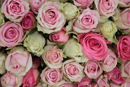 Detail of a wedding centerpiece, different shades of pink roses photo