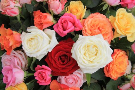 Mixed rose bouquet, big roses in bright colors Stock Photo - 13151926