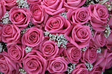 Gruppe von rosa Rosen und Schleierkraut weiß, Detail der Hochzeit Blumen-Arrangement, perfekt als Hintergrund