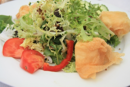 salad with fried goat cheese and tomato, french cuisine photo