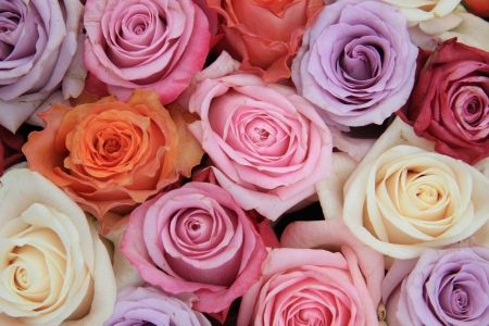 Bridal flower arrangement with roses in many pastel colors Stock Photo - 13748992