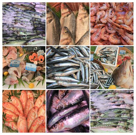 XL collage made from 9 high resolution fish market images
