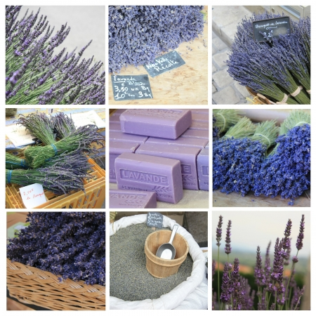 XL-collage made from 9 different high resolution lavender related images photo
