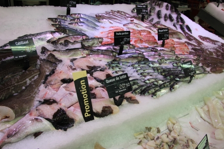 trout, mackarel and goatfish on a local fish market in France