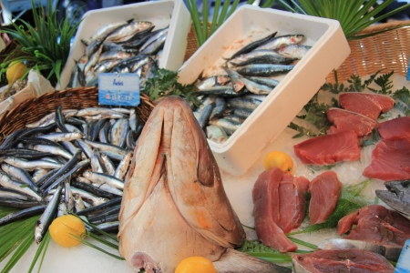 Different sorts of fish on a local fish market in the Provence photo