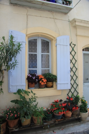 Window with flowers and plants in the Provence, France photo