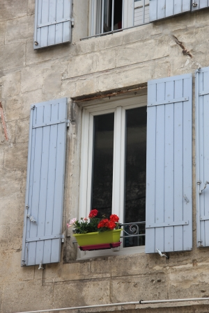 Window with wooden shutters and flowers and plants photo
