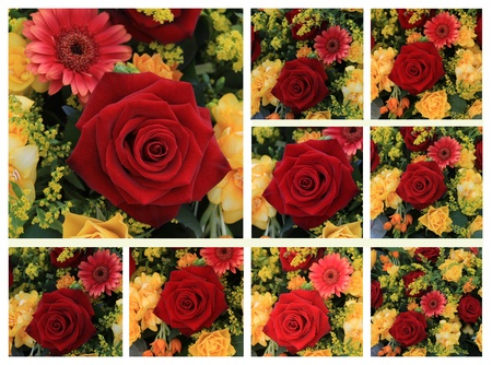 Nine different yellow and red rose images in a high resolution collage photo
