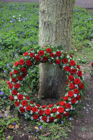with sympathy: Red roses and white gypsophila in a funeral wreath Stock Photo