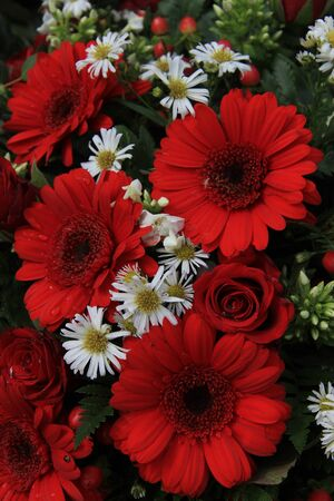 matricaria: Red roses and gerberas with berries and matricaria