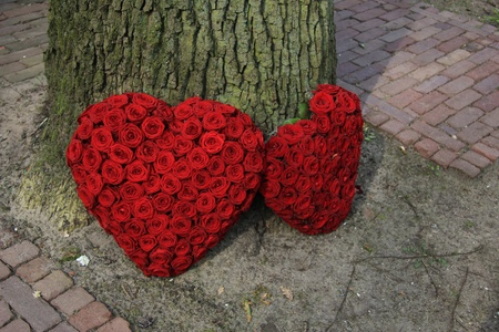 red roses in two heart shaped funeral arrangements photo