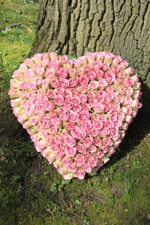 with sympathy: small pink roses in a heart shaped funeral arrangement