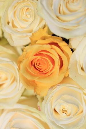 Weiße Und Gelbe Rosen In Einer Hochzeit Blumen-Arrangement ...