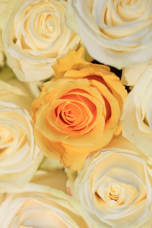 White and yellow roses in a wedding flower arrangement photo
